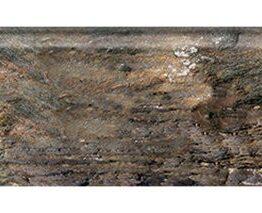 Fantasy & Stone Fossil
