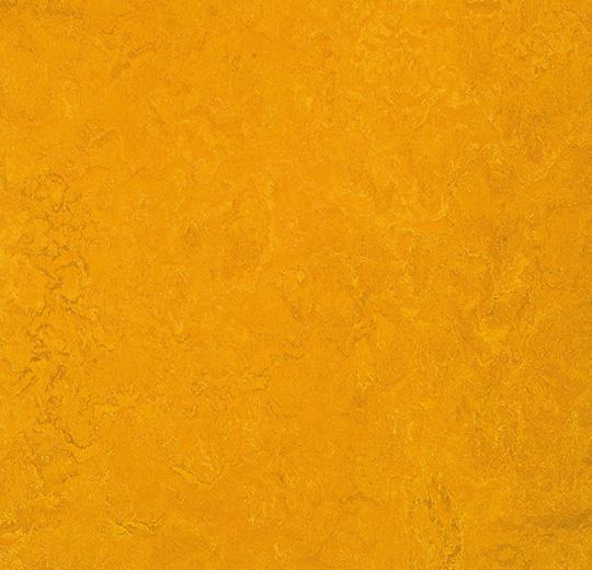 Marmoleum Fresco 3125 golden sunset