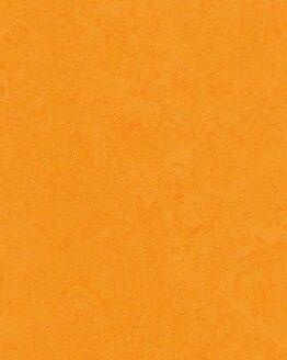 3262 262x328 - Натуральный линолеум Forbo Marmoleum Fresco 3262 marigold