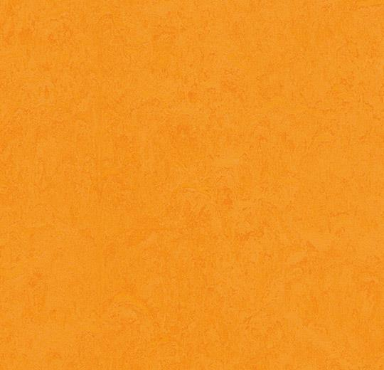 3262 - Натуральный линолеум Forbo Marmoleum Fresco 3262 marigold