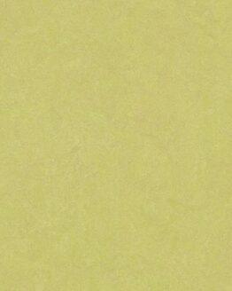 Marmoleum Fresco 3885 spring buds