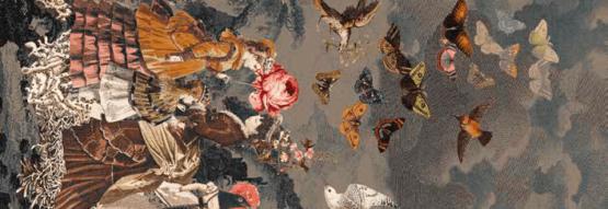 EGE Atelier Papillons Grisbleus
