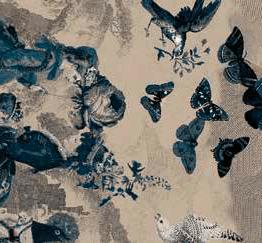 EGE Atelier Papillons Monochrom