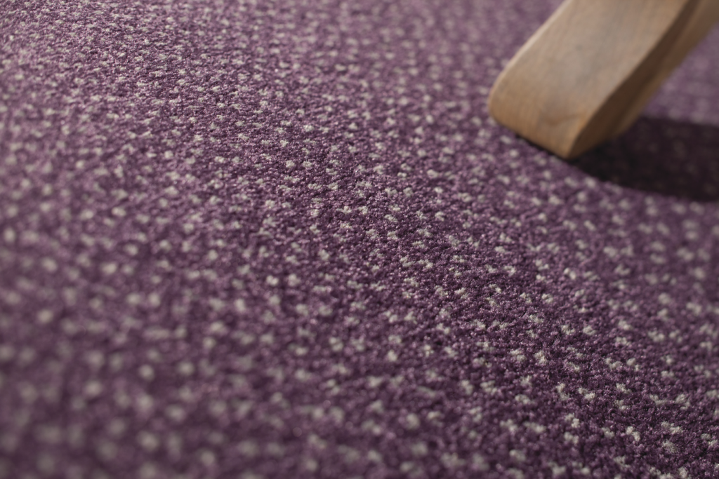 72 dpi 4135 closeup carpet capitol 890 purple 4 1024x683 - Ковровое покрытие Balsan Capitol 950