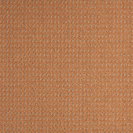 baccarat 450 555x555 - Ковровое покрытие Balsan Baccarat 450