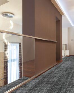72 dpi 4a3j roomset carpet oscar 990 grey 3 262x328 - Ковровое покрытие Balsan Oscar 990