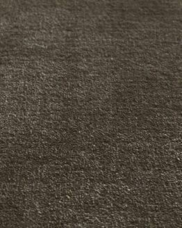 simla fern p1 800x800 1 262x328 - Ковровое покрытие Jacaranda Simla Fern